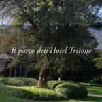 Il Parco dell'Hotel Tritone, tra foglie e petali delicati